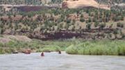 Dolores River Canoeing - Northern Colorado Adventurers (NCA)