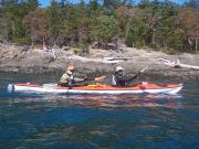 San Juan Islands, WA, Sea Kayaking: Eagles & Orcas